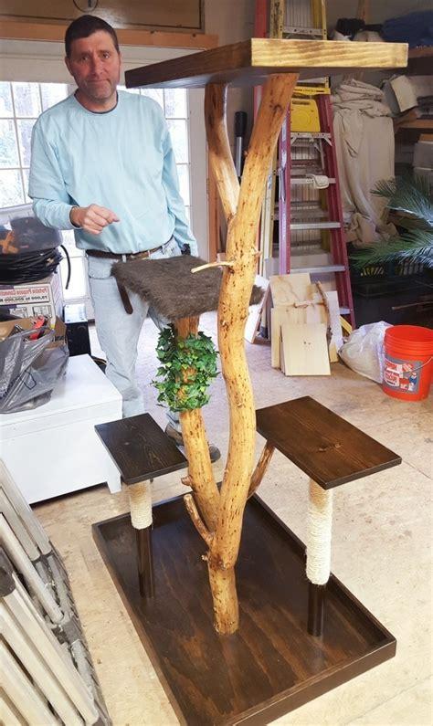 kratzbaum aus baumstamm selber bauen kratzbaum selber bauen 67 ideen und bauanleitungen
