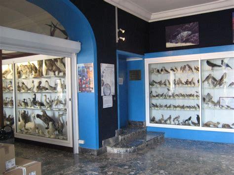aquarium banyuls sur mer horaires banyuls 3 visite de l aquarium de l observatoire oc 233 anologique abricocotier fr