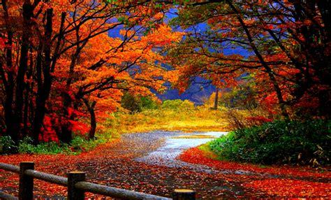 Autumn Fall Desktop Backgrounds by Hd Fall Wallpapers Desktop Best Background Wallpaper
