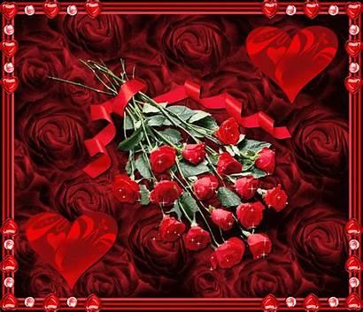 Roses Valentine Rose Valentin Gifs Happy Pour