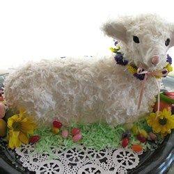 ideas  lamb cake  pinterest sheep