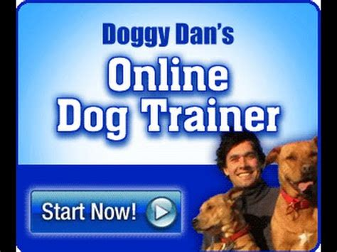Free Dog Training Resource Guide  Doggy Dan's Online Dog. Select Specialty Hospital Akron. Attorneys In Columbus Ohio Carpet Cleaning Ad. Home Office File Cabinets Ideas. Eggnog Recipe With Alcohol Mobile Market App. Reversible Airways Disease Nmap Stealth Scan. Kansas Division Of Workers Compensation. How Can I Get Life Insurance. Mold Remediation Companies Practice Lsat Pdf