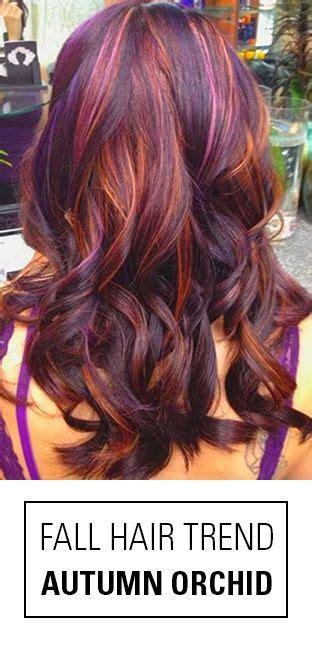 autumn hair color 17 best ideas about fall hair colors on hair