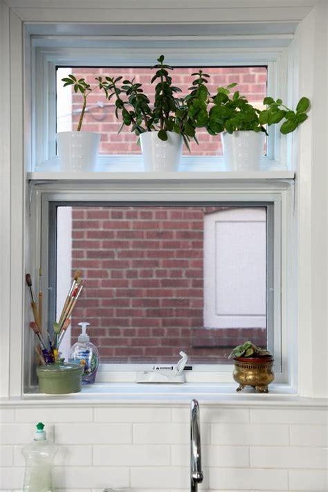Kitchen Window For Plants by 47 Kitchen Window Plant Shelves Cat Window Perch