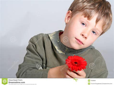 boy holding flower stock image image  holding
