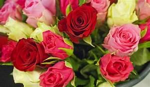 Bouquet De Fleurs : le blog des fleurs de nicolas le blog des fleurs de nicolas ~ Teatrodelosmanantiales.com Idées de Décoration