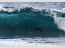 ROTTNEST ISLAND TO DECIDE 2017 HIF PRO AM SERIES CHAMPIONS