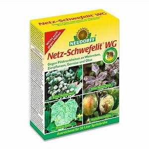 Mittel Gegen Mehltau : neudorff netz schwefelit wg gegen pilzkrankheiten ~ Michelbontemps.com Haus und Dekorationen