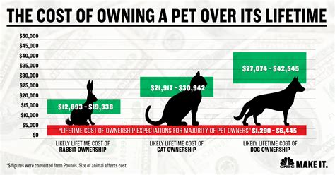 How Much Does It Cost To Own A Dog 7 Times More Than You