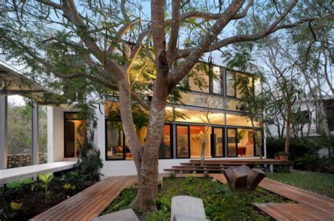 Beautiful Brazilian House Built Up And Around A Tree : Respectful House Among Trees Built Depending On The
