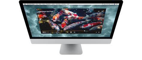 Best Media Players For Mac by Best Media Player For Mac Elmedia Player