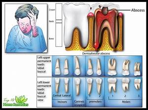relief from tooth nerve pain