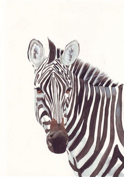 zebra painting print  watercolor painting