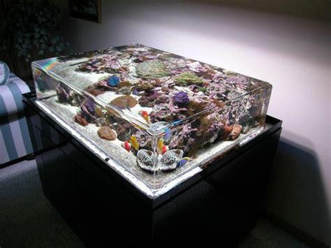 aquarium table funnycom