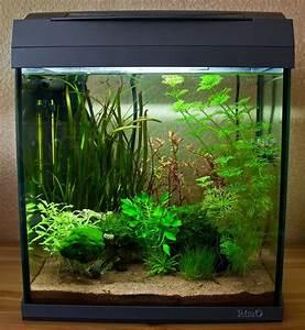 Aquarium Einrichten Beispiele : tetra aquaart discovery line wir haben es uns genau angeschaut ~ Frokenaadalensverden.com Haus und Dekorationen