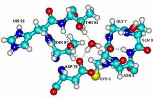 protein molecule Gallery