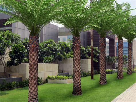 landscape design india school landscape designs in new delhi vasant kunj by