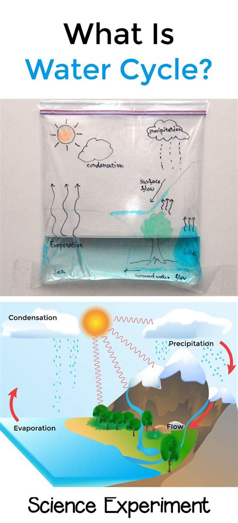 water cycle stem water cycle preschool science 768 | cab4aff8ef16bf889c6ae5c0e24b3cdb
