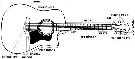 guitar anatomy guitartuner