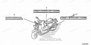 Honda Scooter 2013 Oem Parts Diagram For Mark