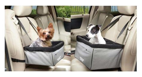 Elevated Car Seats For Dogs