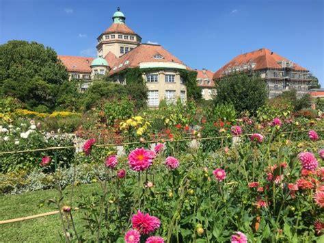 Botanischer Garten Muenchennymphenburg  Picture Of