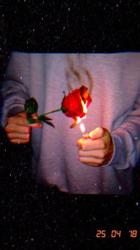 credit  atthesocialclimber  instagram burning rose