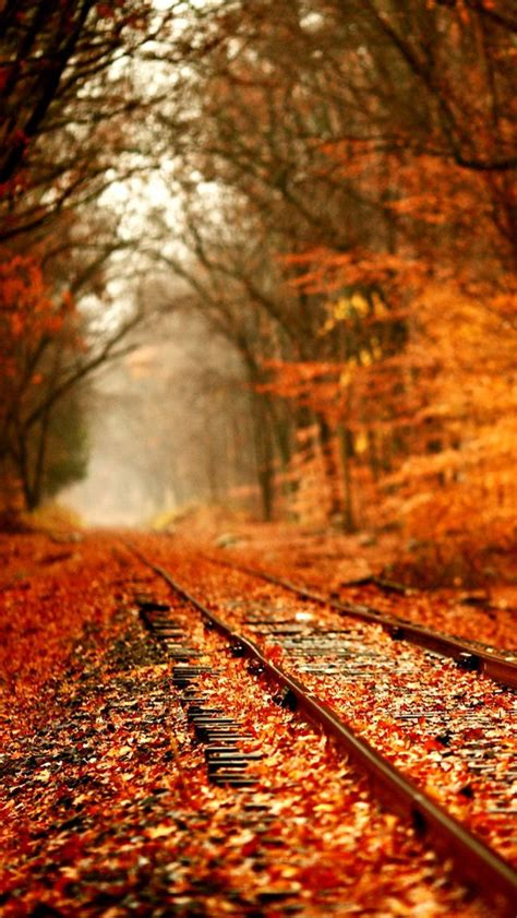 That is why, we have gathered the most gorgeous examples of an aesthetic wallpaper to grace your phone. #iPhone5, #Wallpaper, #Landscapes | Fall wallpaper tumblr ...