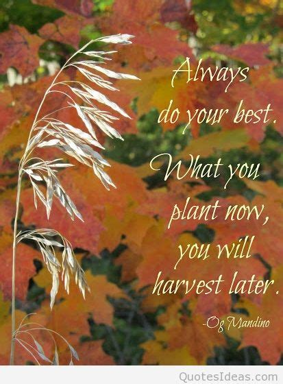 autumn wallpapers quotes hd sayings cards wishes