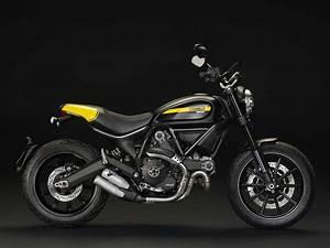 Ducati Scrambler 800 : ducati scrambler for new riders off roaders hipsters asphalt rubber ~ Medecine-chirurgie-esthetiques.com Avis de Voitures