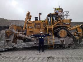 cat d11 cat d11 flickr photo