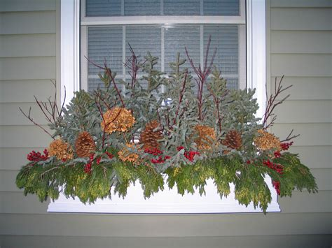 Window Boxes In The Winter Article How And What To Do