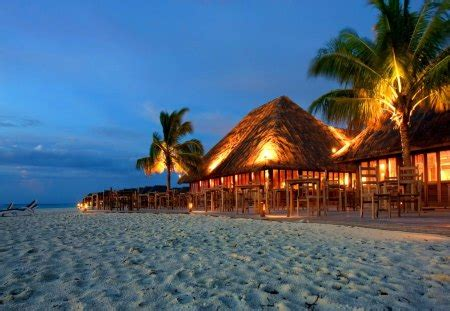 tropical evening beaches nature background wallpapers