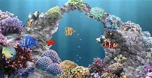 Aquarium Live Wallpaper Windows 8
