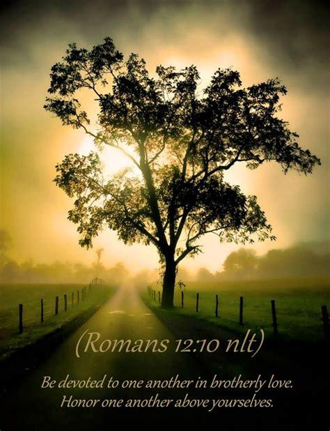 romans  nlt bible scripture pictures life quotes