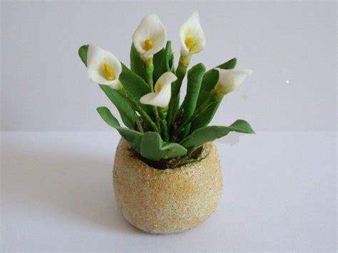 serre fleurs et plantes au 1 12 232 me minipam