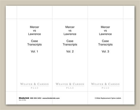 insertable spine labels   wide binders