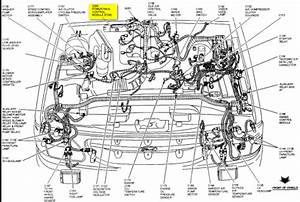 97 Ford Explorer 4 0 Sohc All 4 O2 Sensors Bad At Once