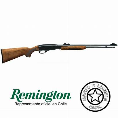 Rifles Calibre Remington Cl Cmrl Bdl Lr