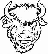 Buffalo Coloring Clipart Pages Head Cheetah Clip Drawing Face Water Yak Herd Bison Template Clipartmag Sketch Animals Pencil sketch template