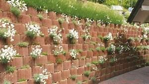 Gartengestaltung Böschung Gestalten : pflanzringe zur hangbefestigung garten hanggestaltung pinterest garten pflanzen und ~ Markanthonyermac.com Haus und Dekorationen