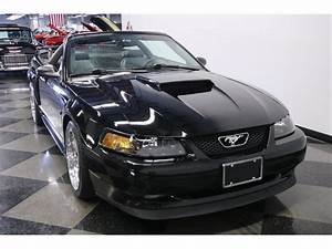 2001 Ford Mustang for Sale | ClassicCars.com | CC-1275915