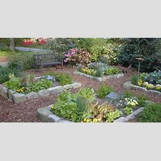 Beautiful Front Yard Vegetable Garden It's Organic Too
