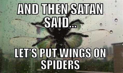 Spider Meme - and then satan said let s out wings on spiders know your meme