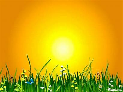 Summer Background Powerpoint Backgrounds Yellow Templates Slides