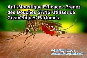 Prise Anti Moustique Efficace : anti moustique efficace maison anti moustique naturel ~ Dailycaller-alerts.com Idées de Décoration