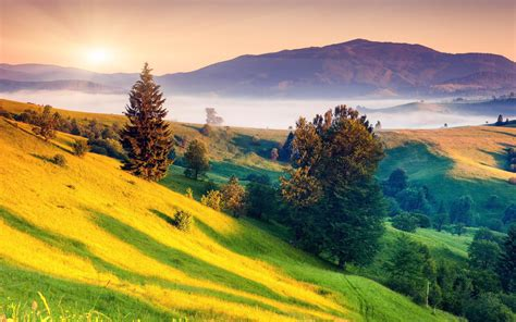 唯美绿色护眼高清意境壁纸_让人心旷神怡的美景_风景壁纸_