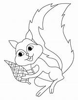 Squirrel Coloring Pages Flying Printable Squirrels Preschool Sheets Clipart Scaredy Cliparts Template Library Clip Print Popular Getdrawings Getcolorings Coloringhome sketch template
