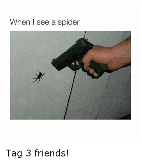 I Saw A Spider Meme - funny spider memes of 2016 on sizzle 99 problems