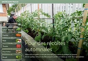 Quoi Planter En Automne : pour des r coltes automnales la presse ~ Melissatoandfro.com Idées de Décoration